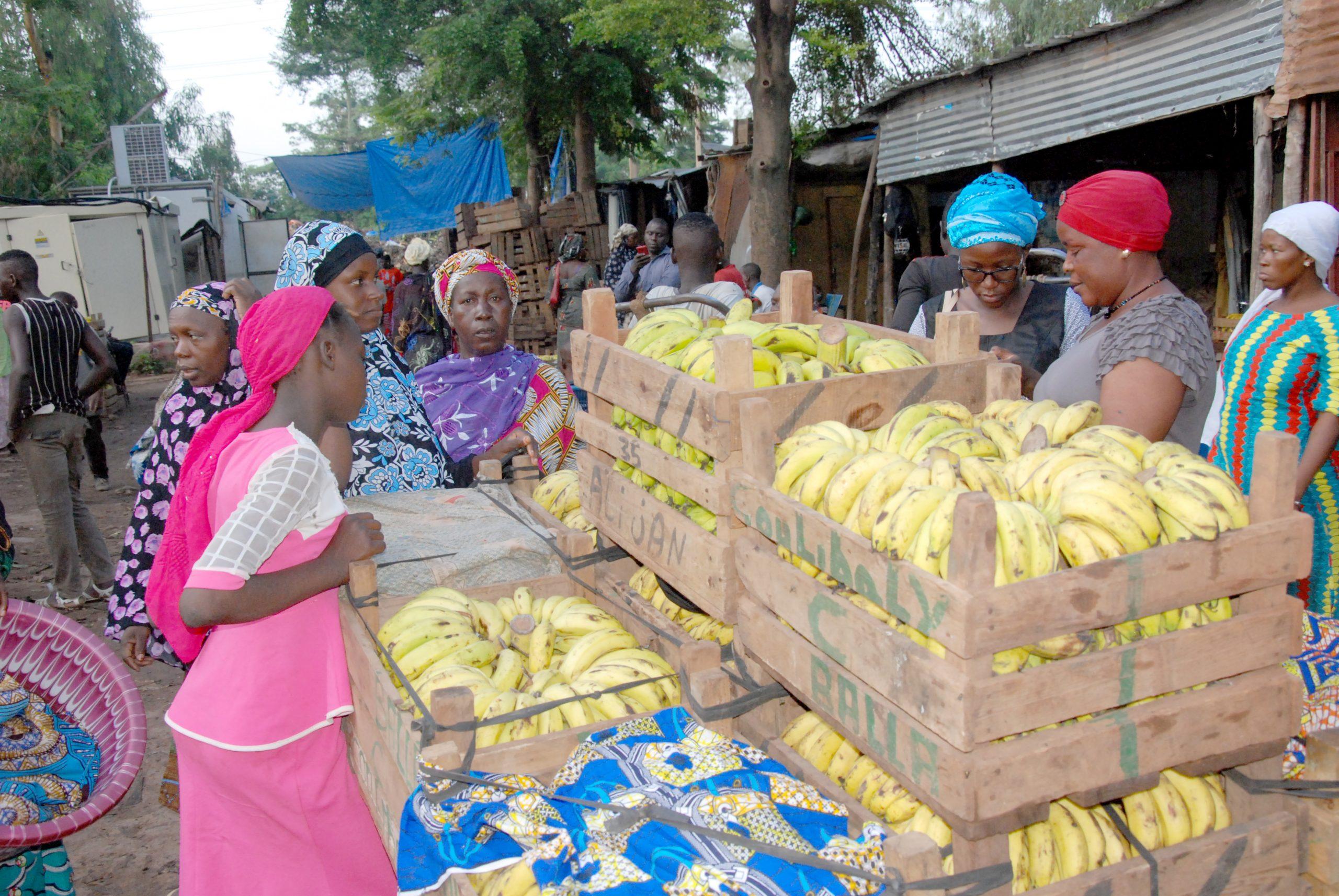 Mali : pourquoi les transactions monétaires des migrants connaissent une baisse