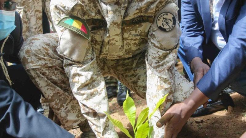 Mali : campagne nationale de reboisement lancée par Col. Assimi Goïta
